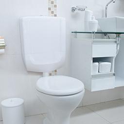 Descarga para Banheiro